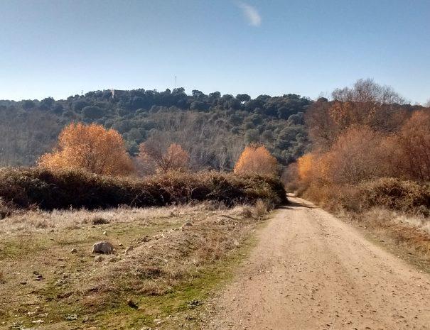 Talavera (2)